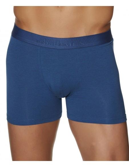 Pack 2 Boxers Jardin Anglais & Bleu AUBADE MEN-Pour Lui, sous vêtements Homme